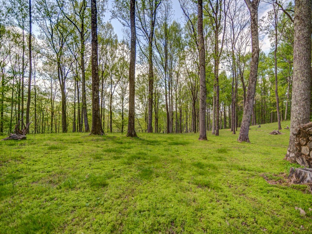 Image 1 for Lot 7 Pennsylvania Road in Arden, North Carolina 28704 - MLS# 582884
