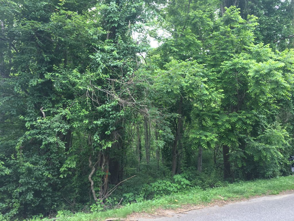 Lot 17 Country Club Drive in Canton, North Carolina 28716 - MLS# 591779