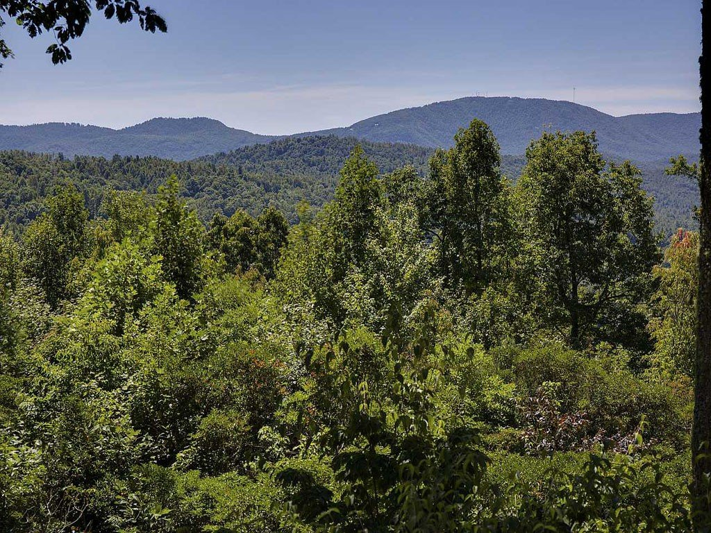 Image 17 for 303 Piney Knoll Lane in Hendersonville, North Carolina 28739 - MLS# 594664