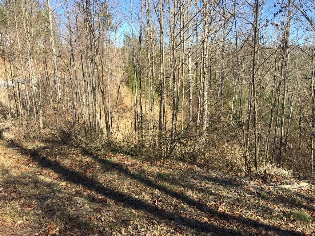 L30 Walnut Cove Road #30 in Mars Hill, North Carolina 28754 - MLS# 3145030