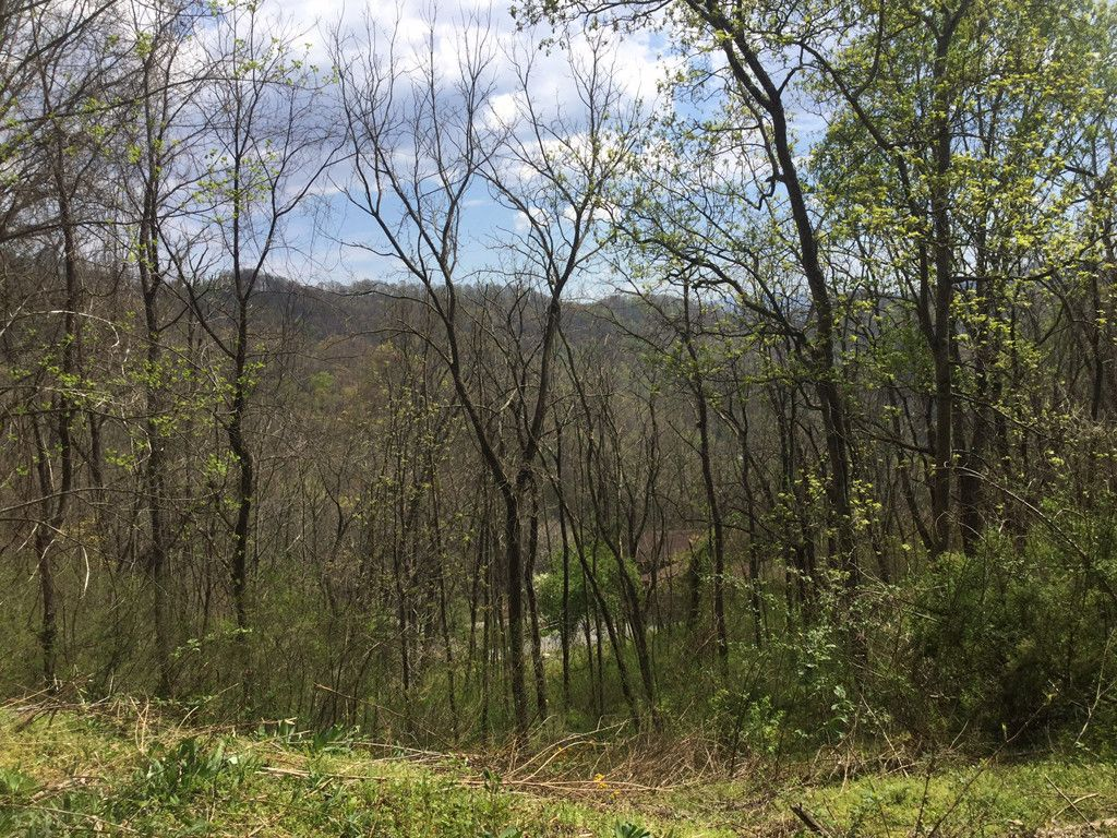 Lot 27 Triton Lane in Waynesville, North Carolina 28785 - MLS# 3149084
