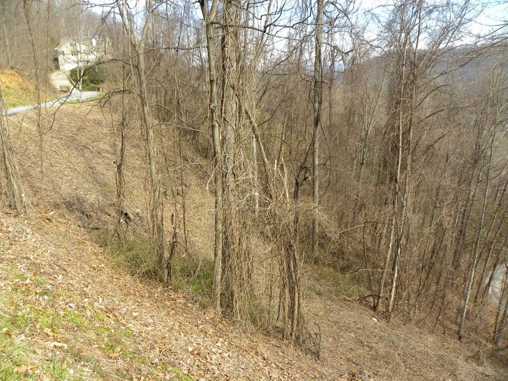 Lot 39 Grandview Cliff Heights in Maggie Valley, North Carolina 28751 - MLS# 3160717