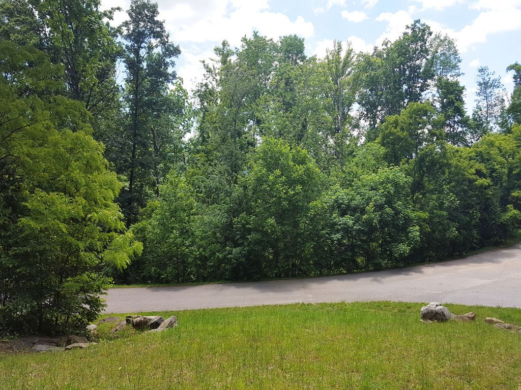 51 Leisure Lane in Swannanoa, North Carolina 28778 - MLS# 3162134