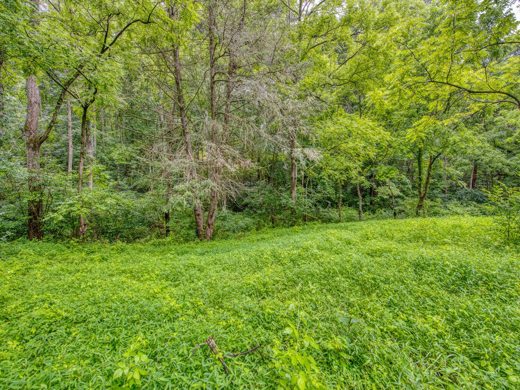 Lot 2 Mary Ruth Way in Clyde, North Carolina 28721 - MLS# 3172136