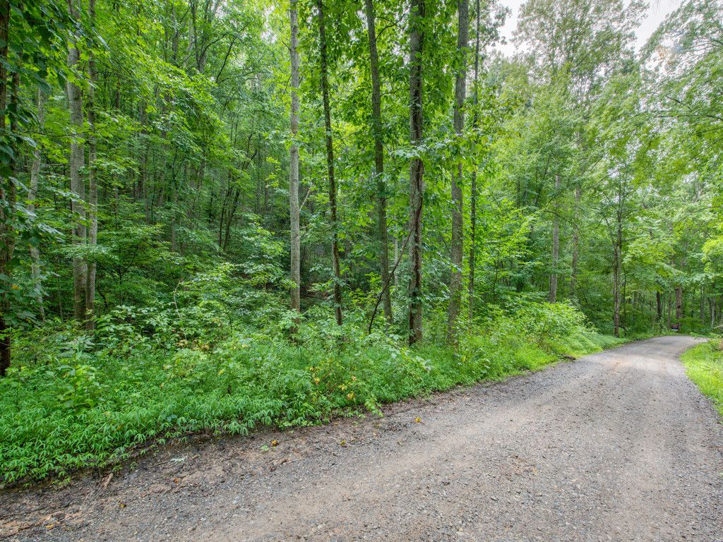 Lot 3 Mary Ruth Way in Clyde, North Carolina 28721 - MLS# 3172153
