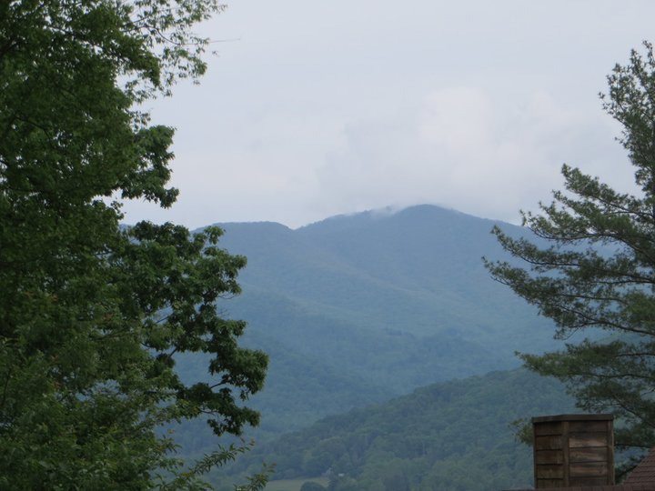 Image 1 for 539 Silver Hawk Lane #41 in Weaverville, North Carolina 28787 - MLS# 3176521