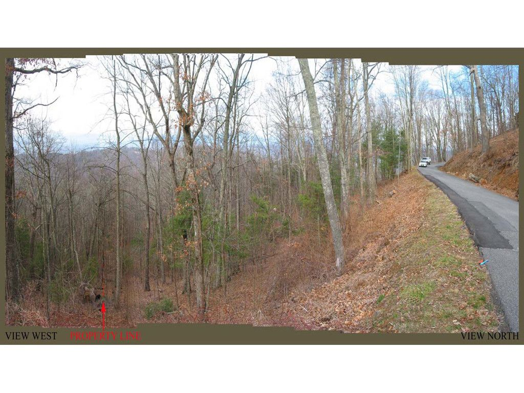 65 Skycliff Drive in Asheville, North Carolina 28804 - MLS# 3183930
