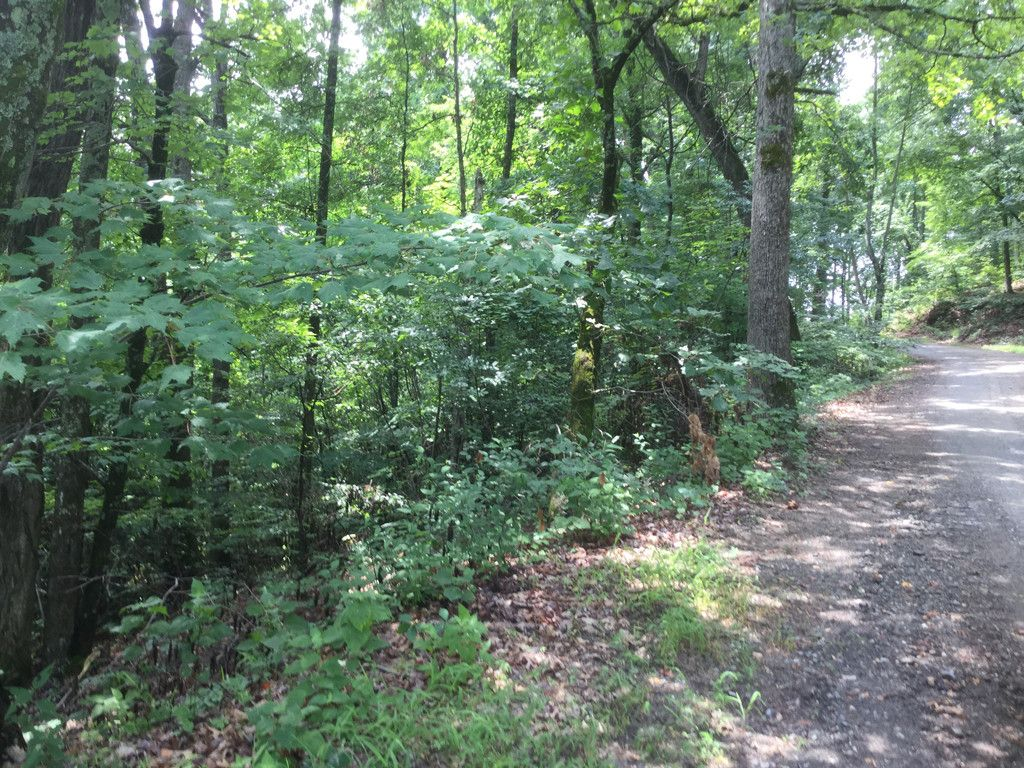 Lot 18 Ridgecrest Drive #18 in Lake Lure, North Carolina 28746 - MLS# 3194773