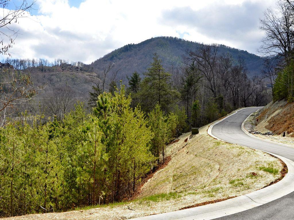 19 Eagles Pass Drive in Black Mountain, North Carolina 28711 - MLS# 3196643
