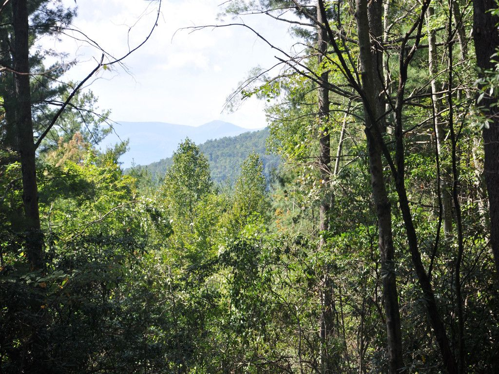 0 Top Of The Mountain Road in Pisgah Forest, North Carolina 28768 - MLS# 3210766