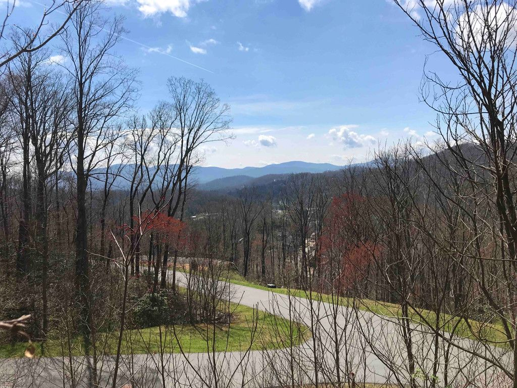 58 Clear Water Trail #519 in Fairview, North Carolina 28730 - MLS# 3227765