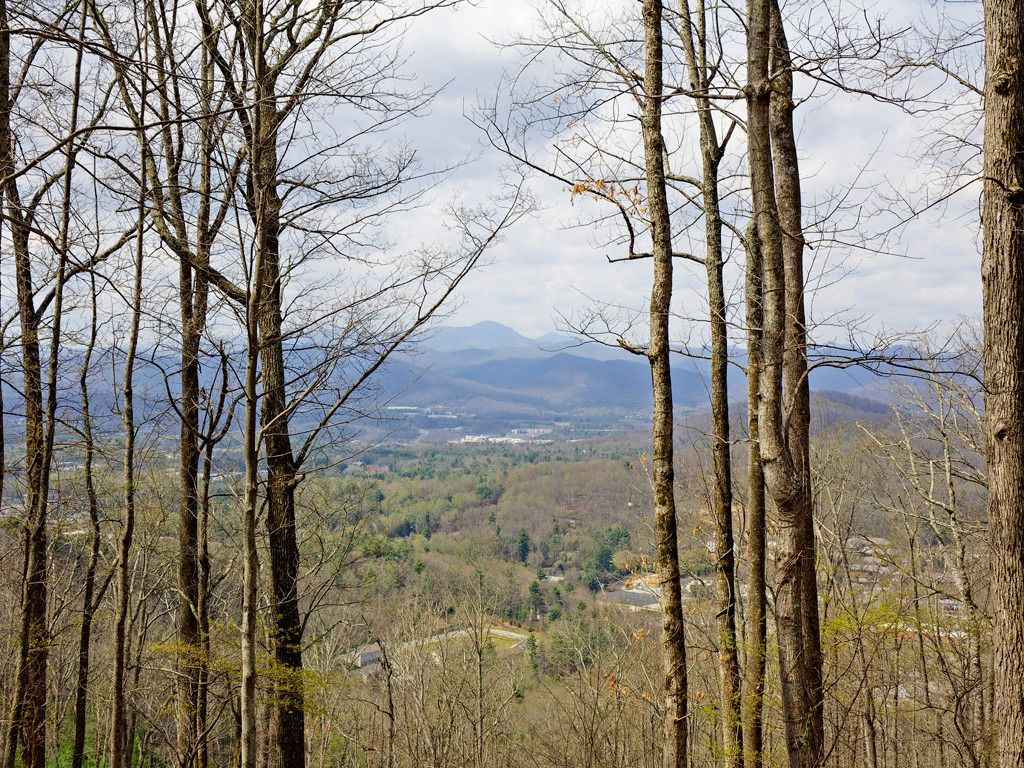 99999 Old Forest Drive #Lot 4 in Asheville, North Carolina 28803 - MLS# 3232274