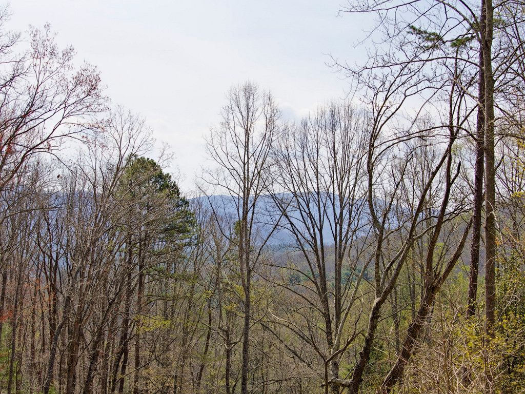 9999 Old Forest Drive #18 in Asheville, North Carolina 28803 - MLS# 3232343
