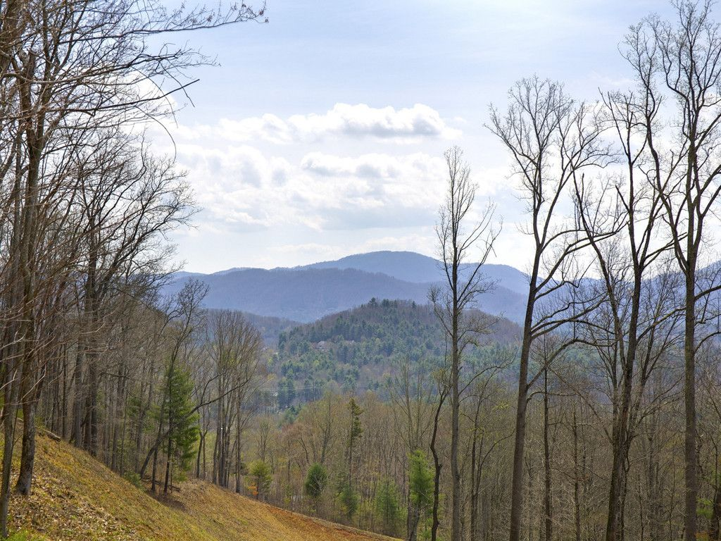 75 Old Forest Drive #Lot 1 in Asheville, North Carolina 28803 - MLS# 3232370