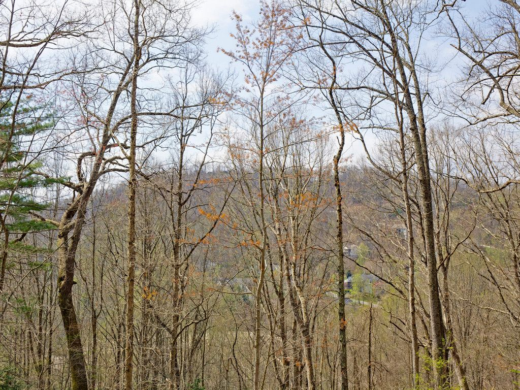 86 Old Forest Drive #Lot 16 in Asheville, North Carolina 28803 - MLS# 3232389
