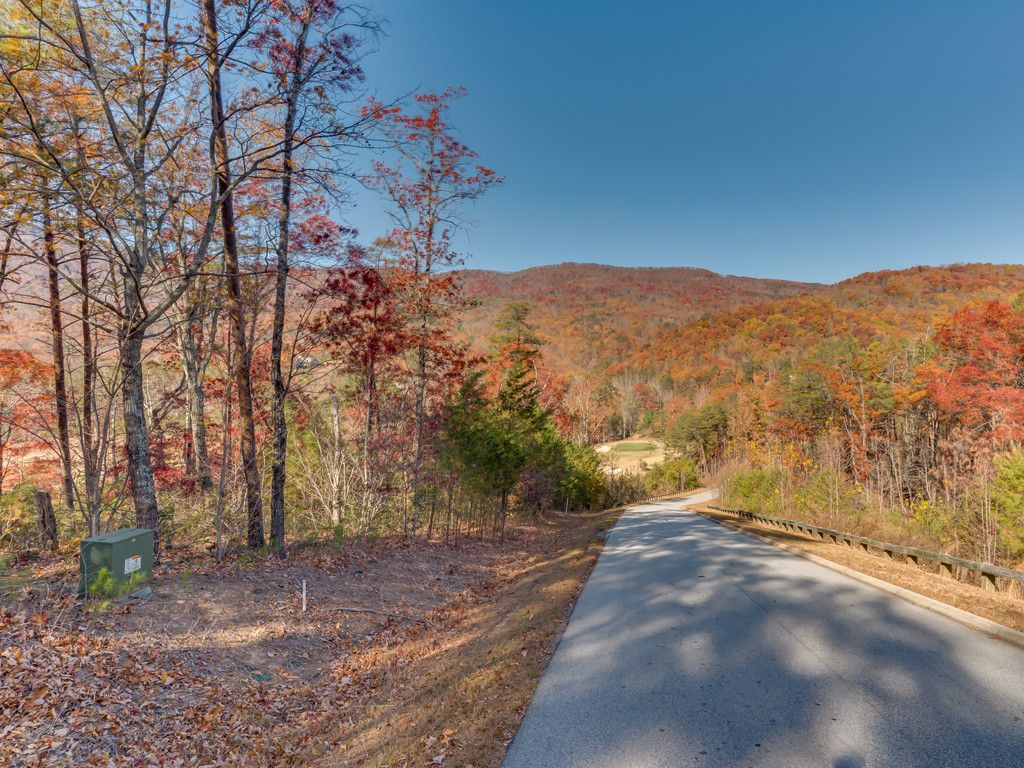 Lot 45 Deep Gap Farm Drive in Mill Spring, North Carolina 28756 - MLS# 3233715
