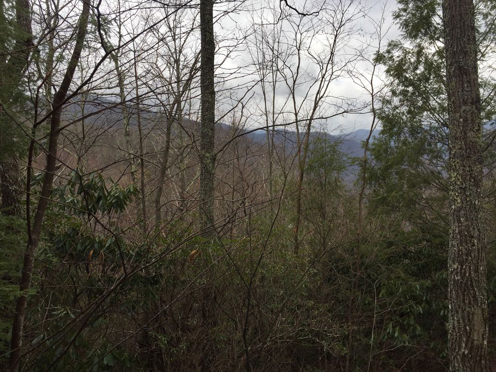 Lot 41 Falcon Crest Loop in Maggie Valley, North Carolina 28751 - MLS# 3244208