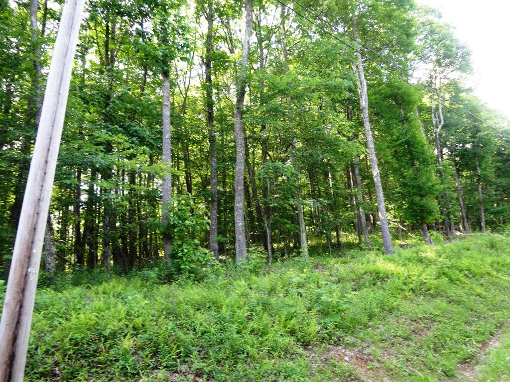 Lot 344 Tearshirt Lane in Mars Hill, North Carolina 28754 - MLS# 3246165