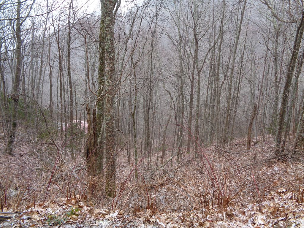 Lot 13 Wolf Laurel Drive in Maggie Valley, North Carolina 28751 - MLS# 3246850