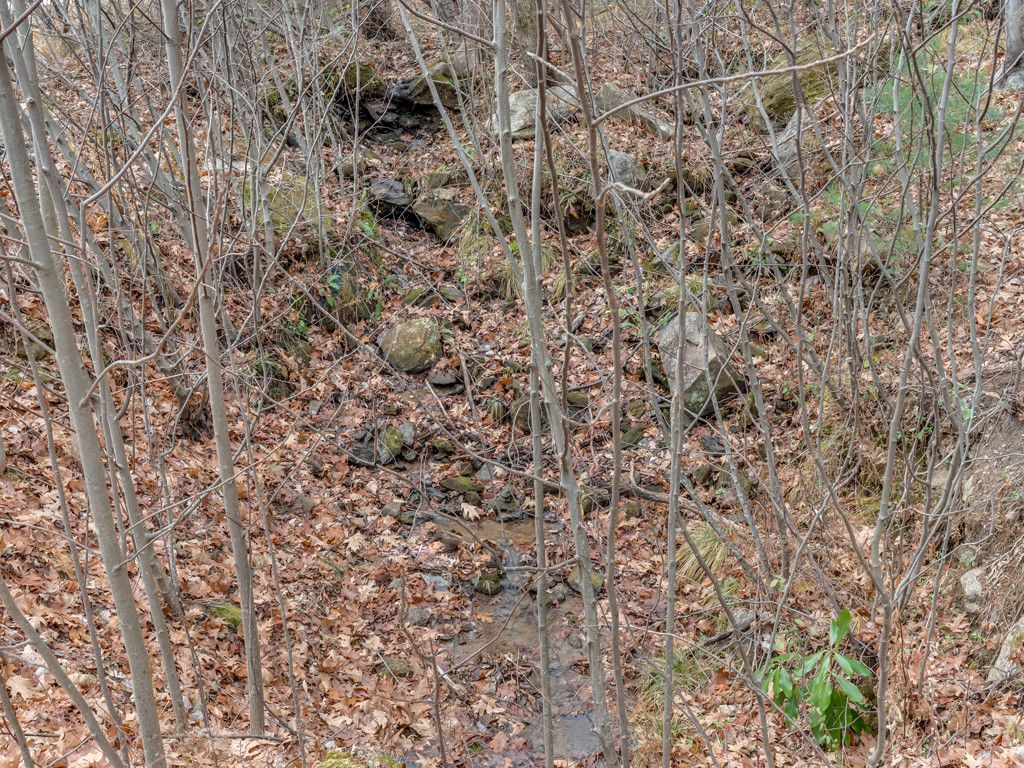 Lot 231 Chesterfield Drive in Mill Spring, North Carolina 28756 - MLS# 3252256