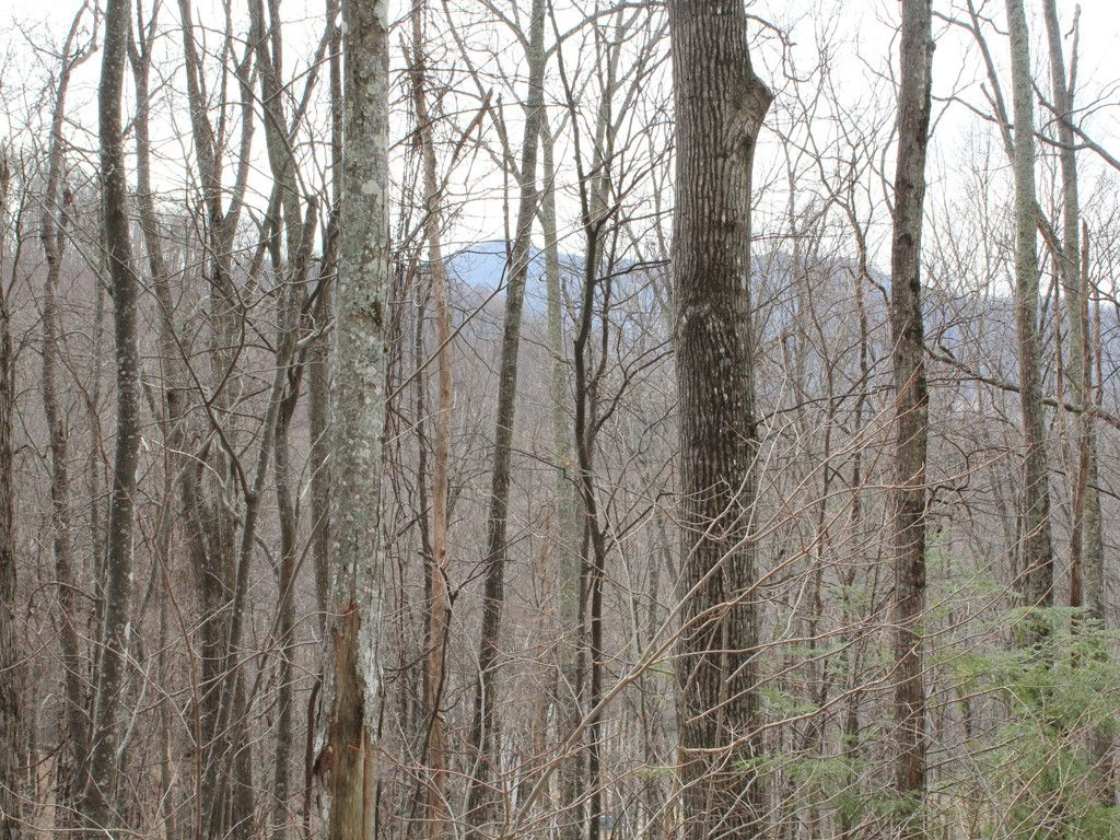 Lot 26 Finlaystone Trace in Waynesville, North Carolina 28786 - MLS# 3255160