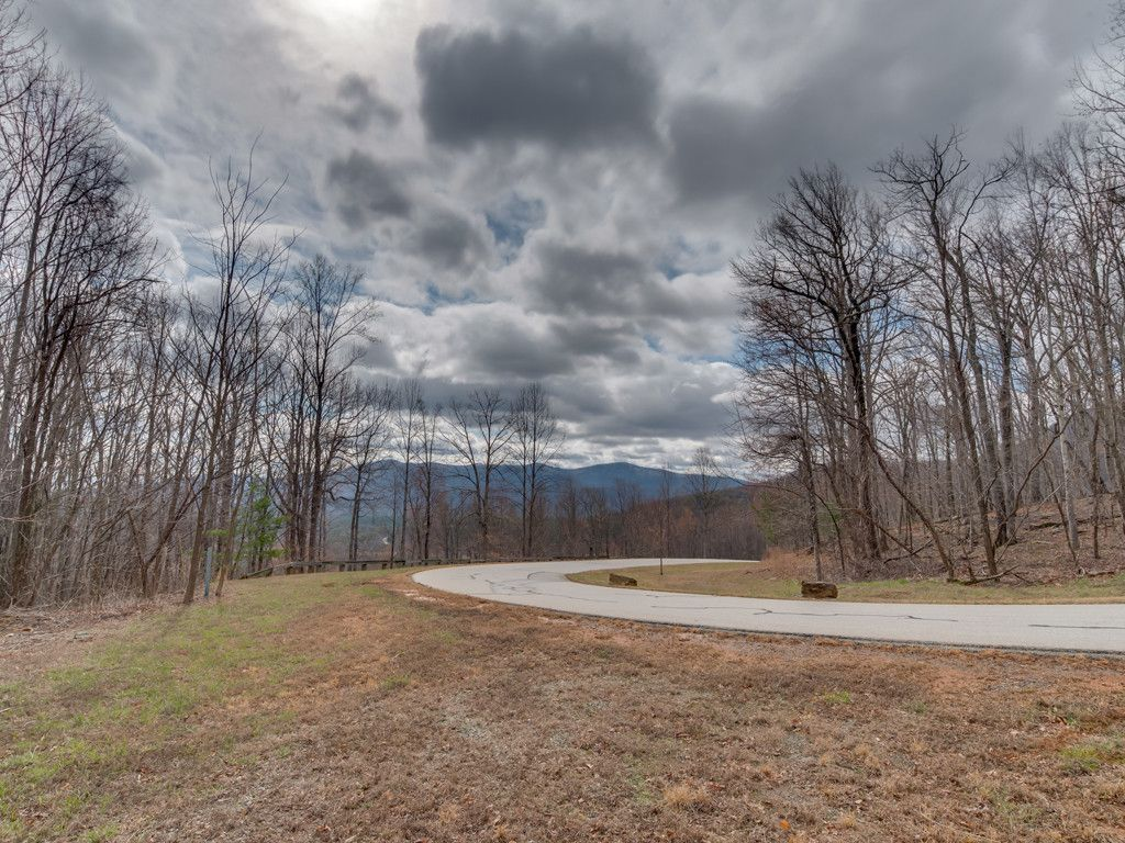 Lot 119 Chesterfield Drive in Mill Spring, North Carolina 28756 - MLS# 3260866