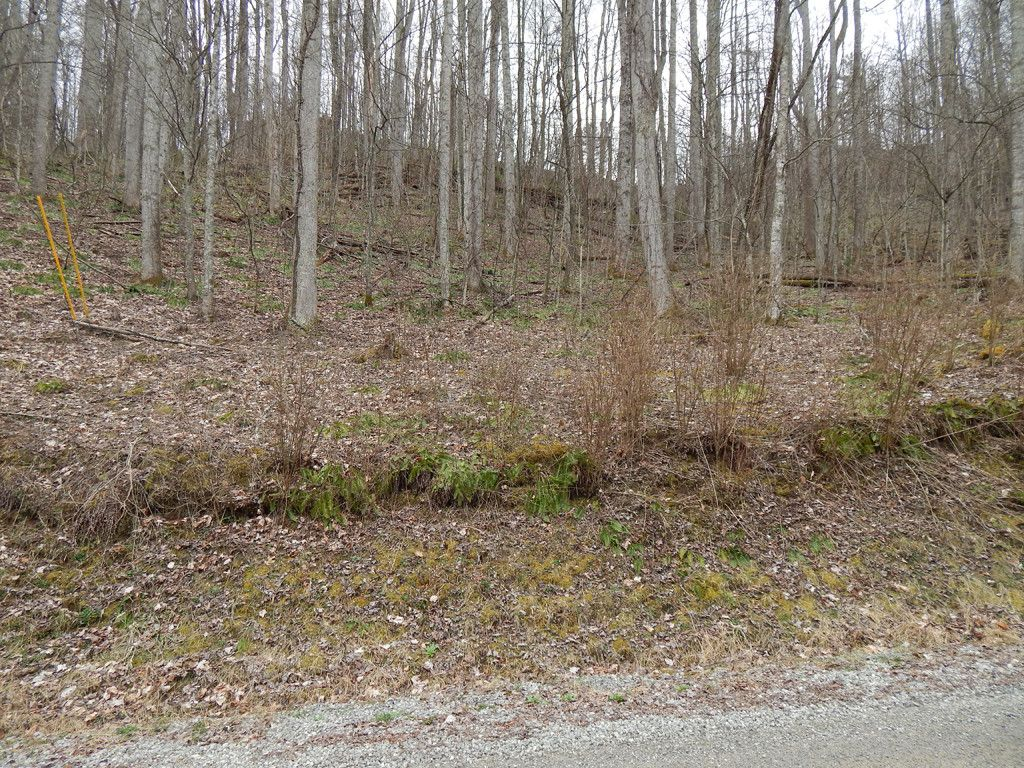 Lot 507 Kitty Lane in Waynesville, North Carolina 28785 - MLS# 3264637