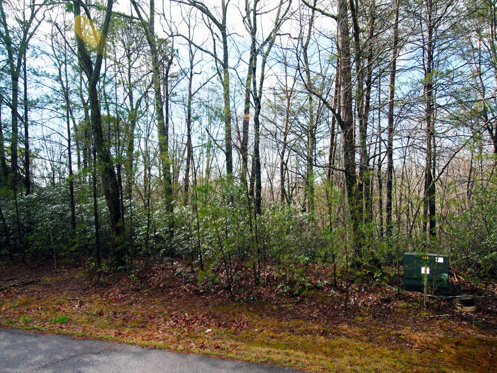 Lot 51 Flynn Court in Lake Lure, North Carolina 28746 - MLS# 3266570