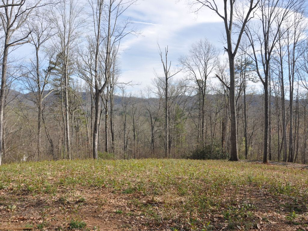 Tbd Cane Creek Road #1 & 2 in Fairview, North Carolina 28730 - MLS# 3269940