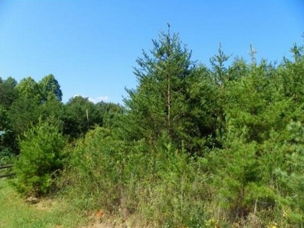 Lot 83 Silent Forest Way #83 in Lake Lure, North Carolina 28746 - MLS# 3270296