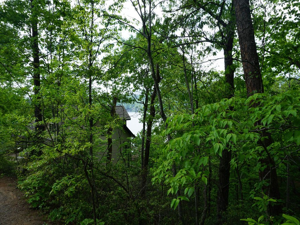 Lot 15 Pier Point Drive in Lake Lure, North Carolina 28746 - MLS# 3276054