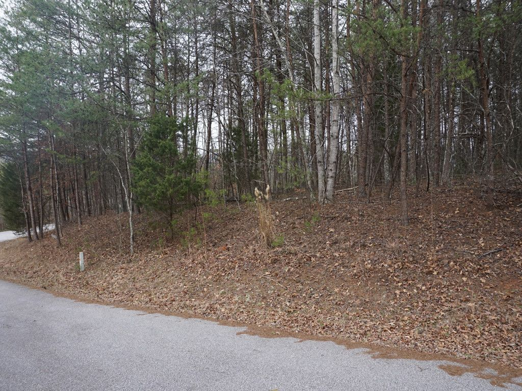 Lot 18 Mcintosh Circle in Lake Lure, North Carolina 28746 - MLS# 3283453