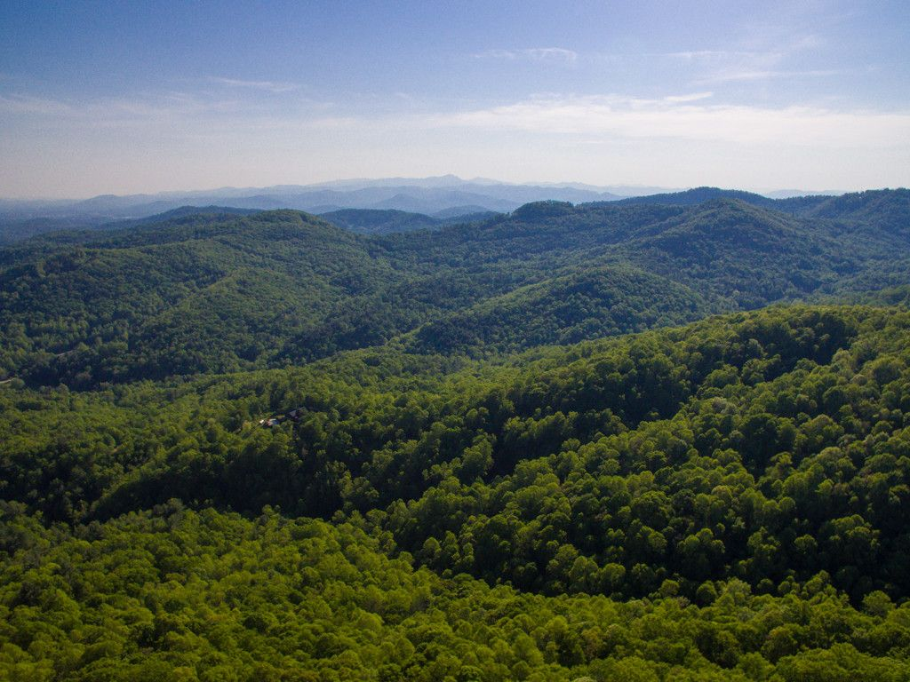 182 +/- Acres Bob Barnwell Road in Asheville, North Carolina 28803 - MLS# 3284817