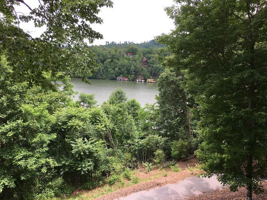 Lot 14 Lurewoods Manor Drive in Lake Lure, North Carolina 28746 - MLS# 3287606