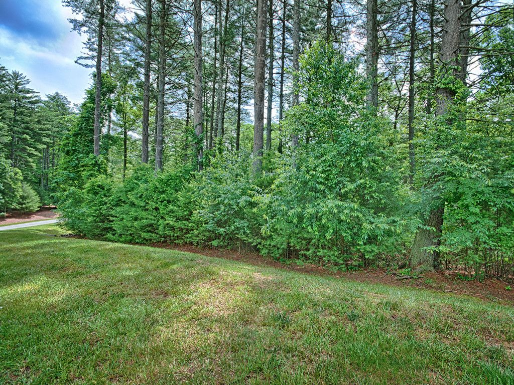 92 Mirehouse Run #148 in Asheville, North Carolina 28803 - MLS# 3289631
