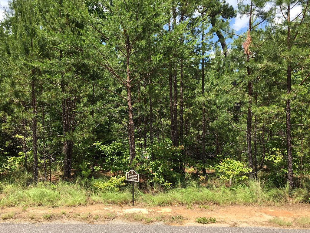 Lot 22 Highland Heights in Lake Lure, North Carolina 28746 - MLS# 3290041