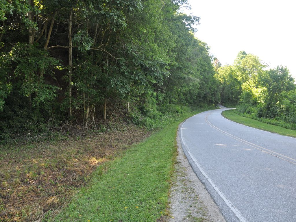 99999 Terrys Gap Road in Hendersonville, North Carolina 28792 - MLS# 3291455