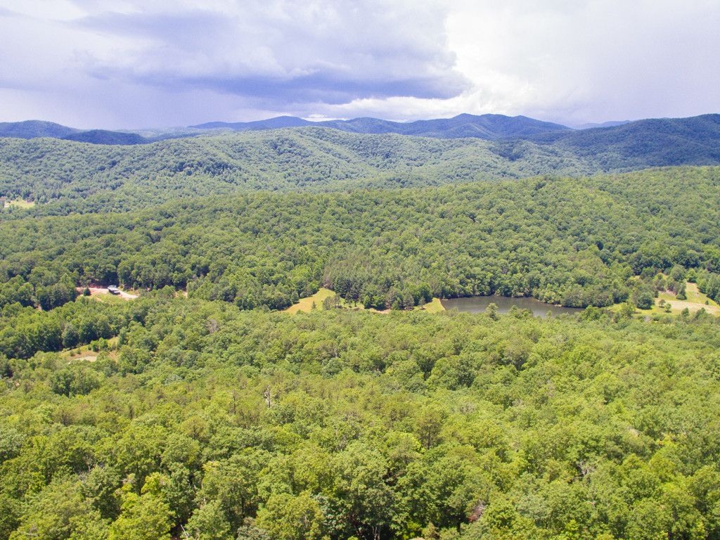 48 Stonefly Drive #161 in Mills River, North Carolina 28759 - MLS# 3293687