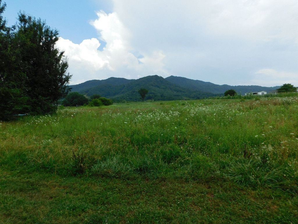 Lot 26 Roy Drive in Waynesville, North Carolina 28785 - MLS# 3305729