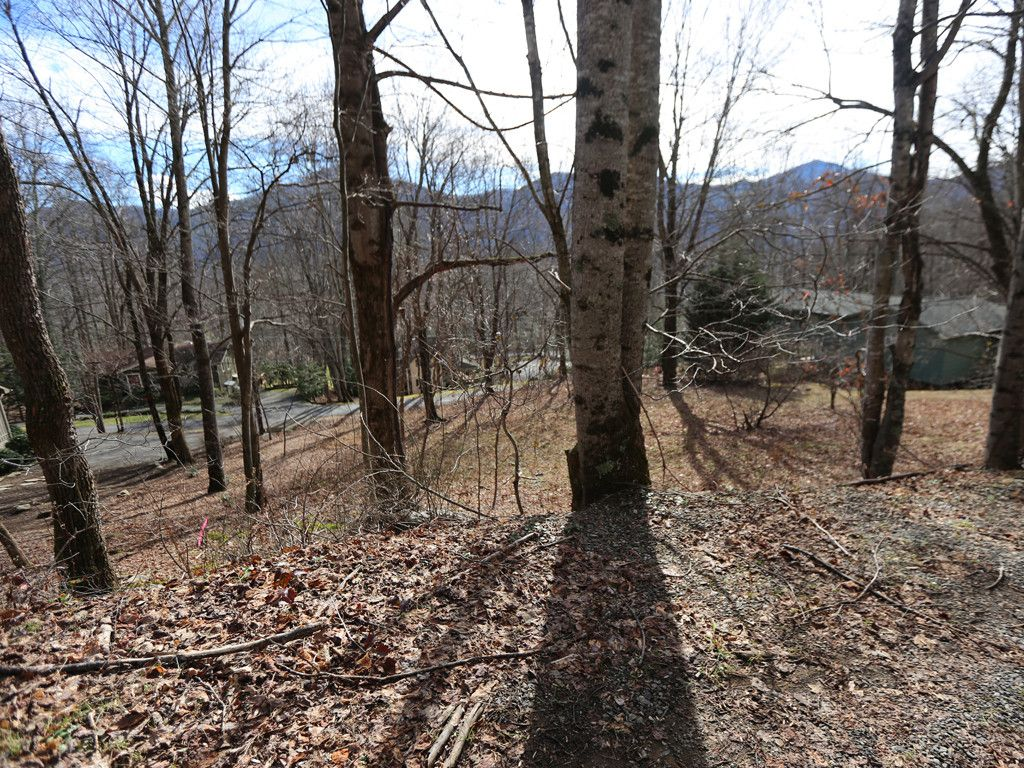 00 Blueberry Lane in Maggie Valley, North Carolina 28751 - MLS# 3321253