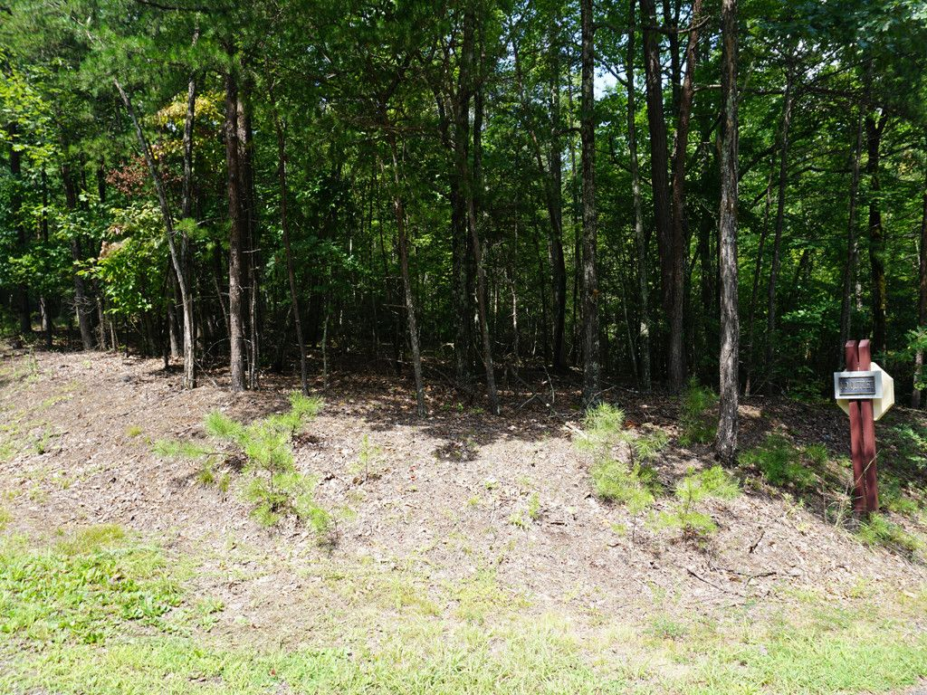 Lot 251 Quail Ridge Boulevard in Lake Lure, North Carolina 28746 - MLS# 3324906