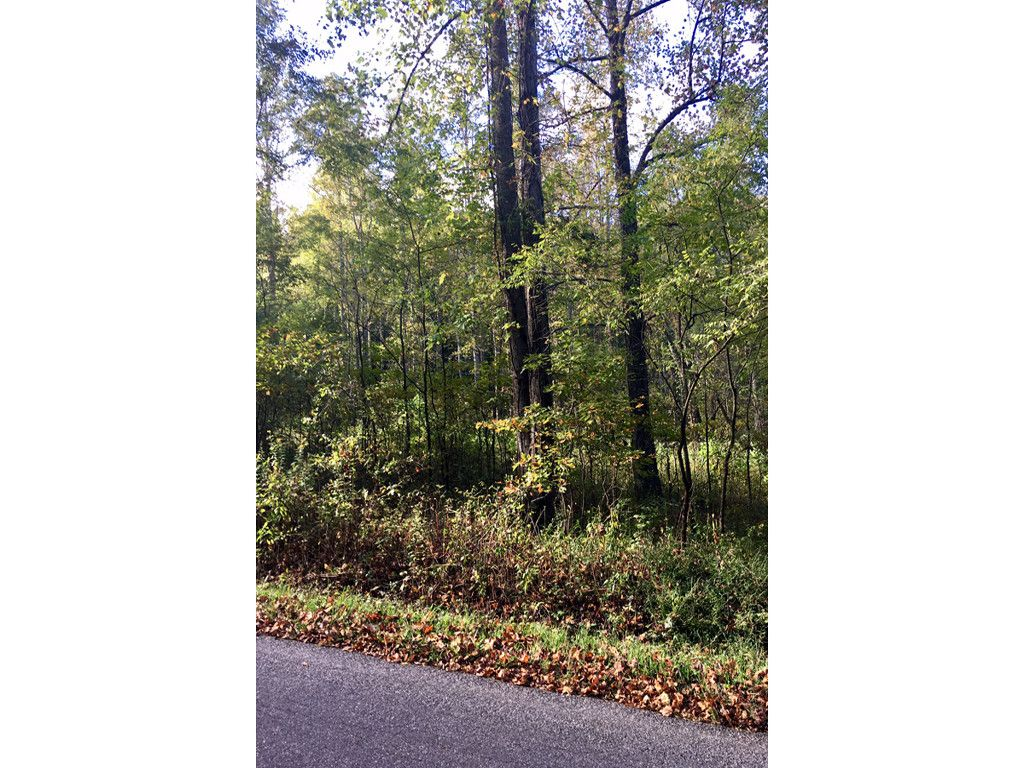 Lot 3 Owenby Cove Road #3 in Fairview, North Carolina 28730 - MLS# 3325601
