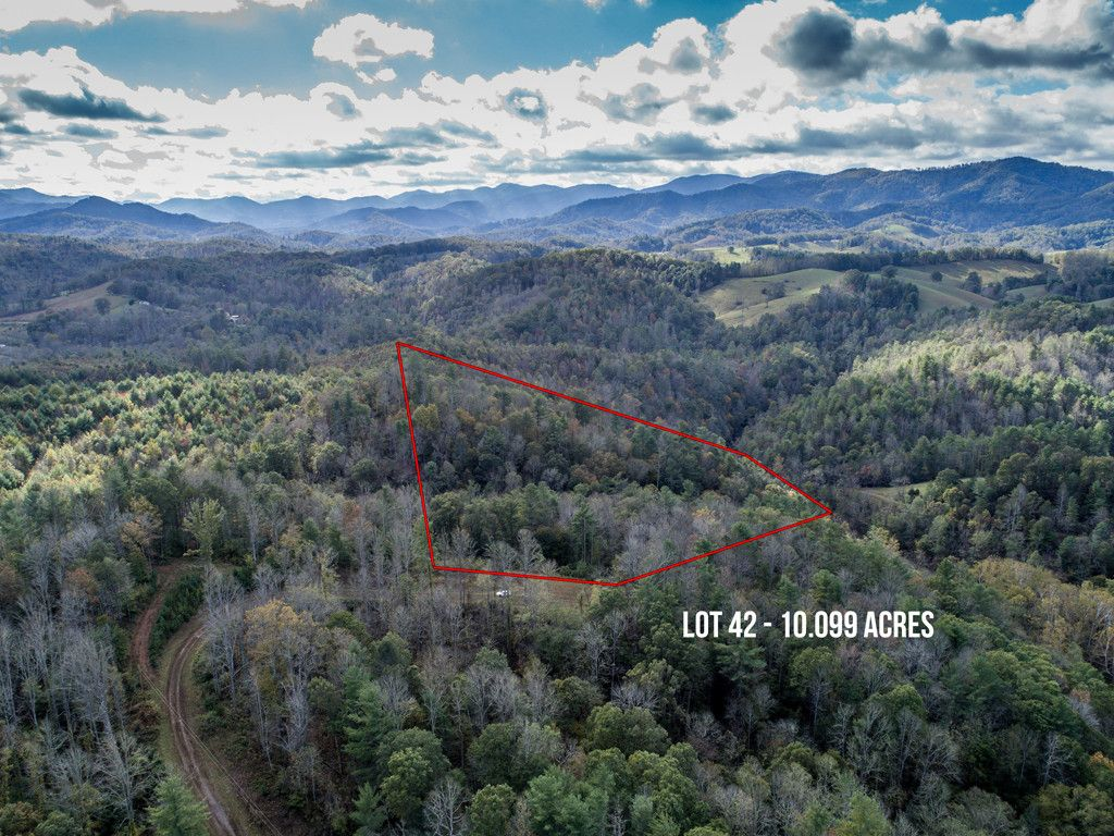 42 Mearwild Drive in Leicester, North Carolina 28753 - MLS# 3331167