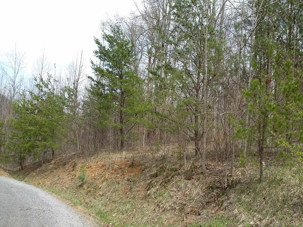 0 Busters Drive #Lot 7 in Waynesville, North Carolina 28786 - MLS# 3335338