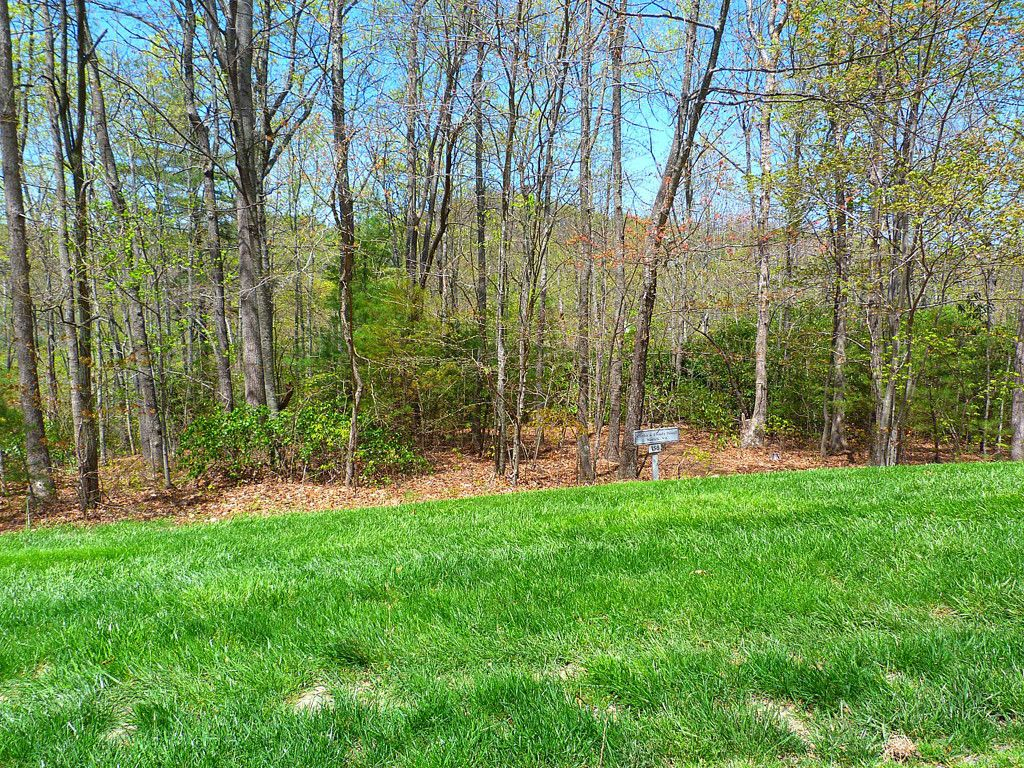 62 Old Hickory Trail #158 in Hendersonville, North Carolina 28739 - MLS# 3334465