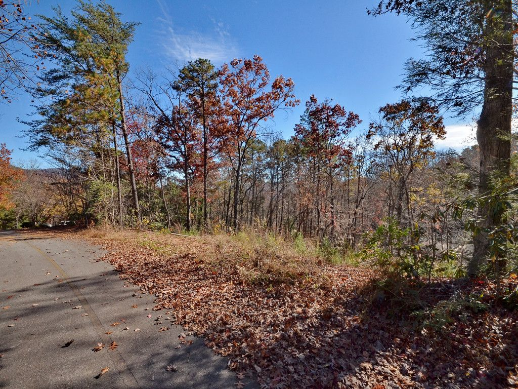 34 Bethel Drive in Black Mountain, North Carolina 28711 - MLS# 3338439