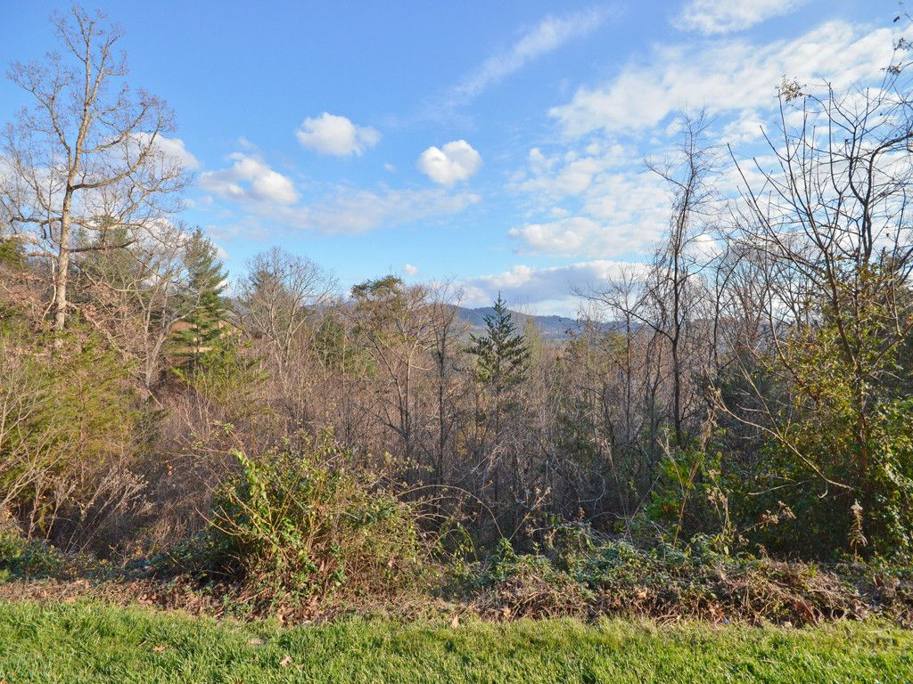 435 Old Stone Gate Place #4, Phase 1 in Asheville, North Carolina 28804 - MLS# 3342940