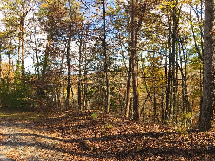 Image 1 for Lot 16 Wilkerson Court in Lake Lure, North Carolina 28746 - MLS# 3344003