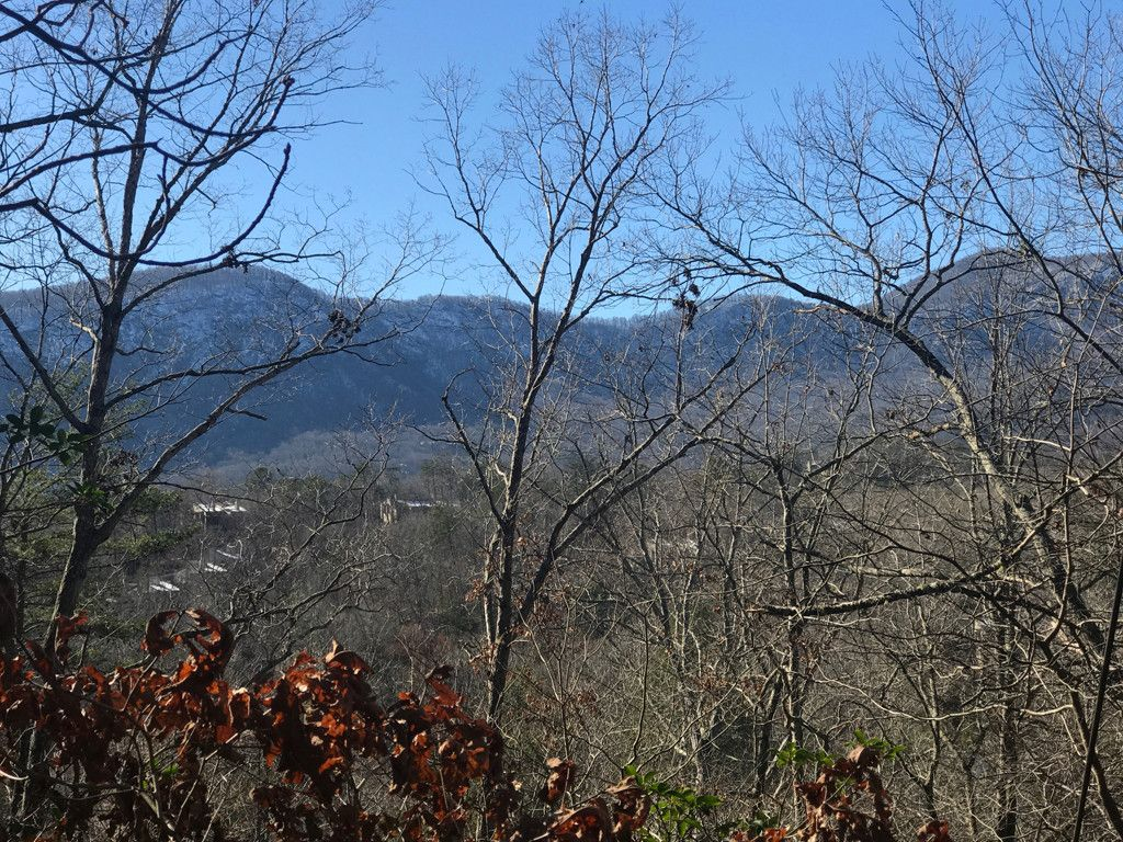 120 & 121 Red Wing Road #120 & 121 in Lake Lure, North Carolina 28746 - MLS# 3350927