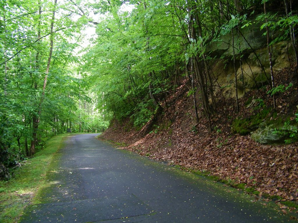 Lot 140 Deerfield Drive in Lake Lure, North Carolina 28746 - MLS# 3361100